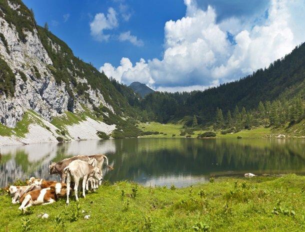 schwarzensee-steiermark.jpg