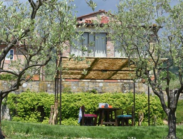 colledibordocheo-lucca-tuin-olijven-zitje.jpg