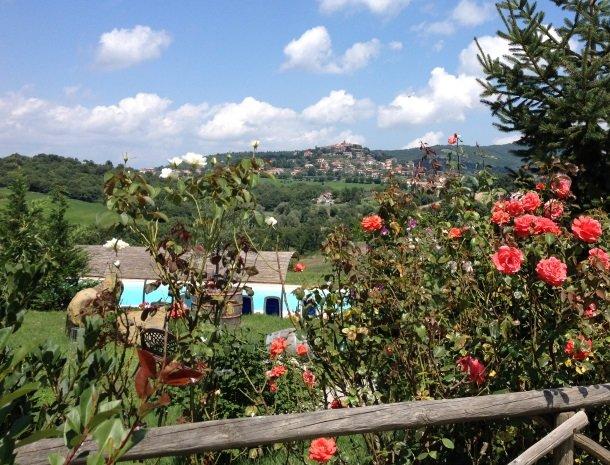 agriturismo gatto giallo montegabbione bloemen uitzicht.jpg