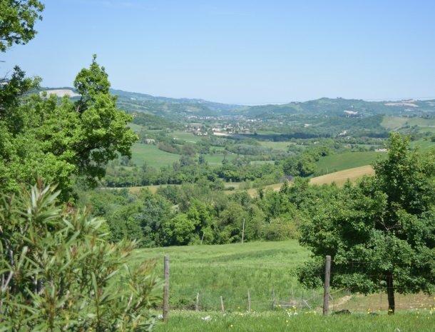 agriturismo alla vecchia quercia-pergola-omgeving.jpg