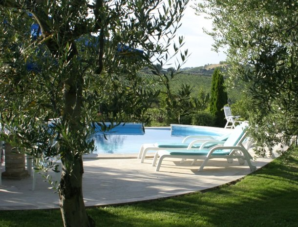 agriturismo-il-crinale-marche-zwembad-olijfbomen.jpg