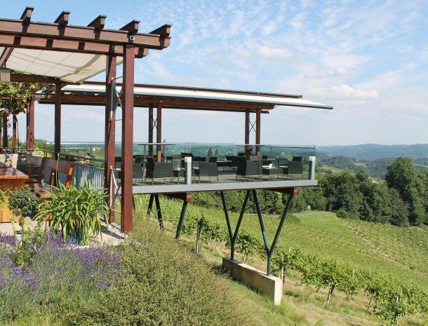 weingut_mahorko-steiermark-wijngaarden.jpg