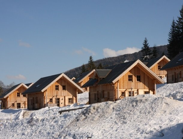 huttendorp-dachsteinblick-pruggern-huisjesinsneeuw.jpg