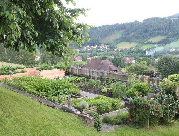 kleinhofers himbeernest - vallei.jpg