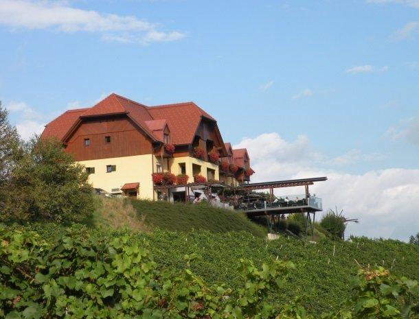 weingut mahorko_buitenkant-wijngaarden.jpg