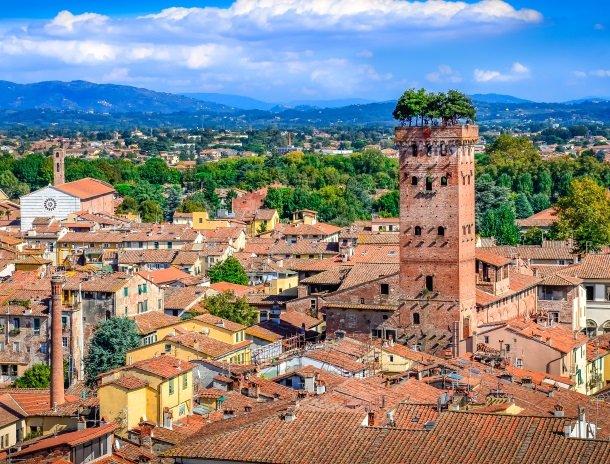 lucca torre dei guinigi.jpg