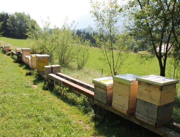 kronhofer-presseggersee-bijenkorfen.jpg
