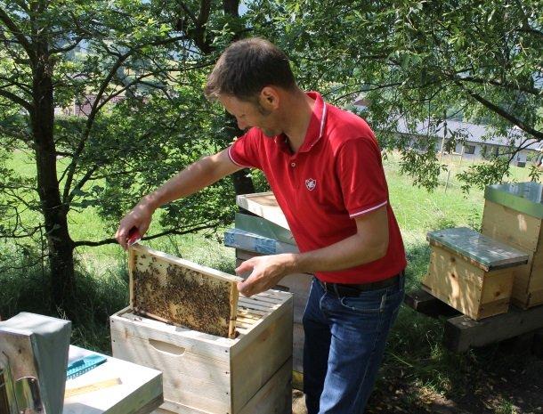 kronhofer-presseggersee-bijenkorfen-eigenaar en imker.jpg