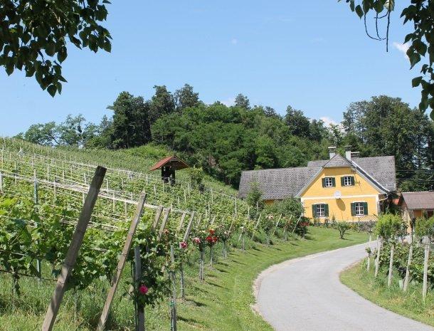 wijnboerderij zuid steiermark.jpg
