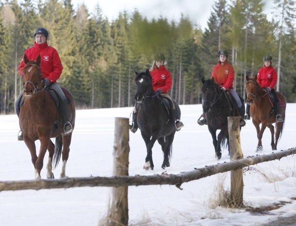 petschnighof-diex-paardrijden.jpg