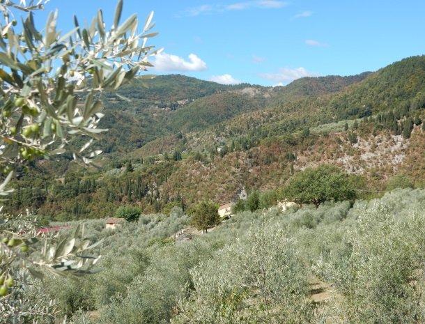 agriturismo-il-giardino-toscane-uitzicht-natuur.jpg