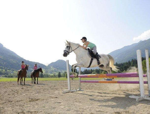 landgut-moserhof-penk-paard.jpg