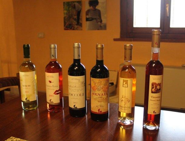 agriturismo santo stefano-castiglion-fiorentino-wijnflesse.jpg