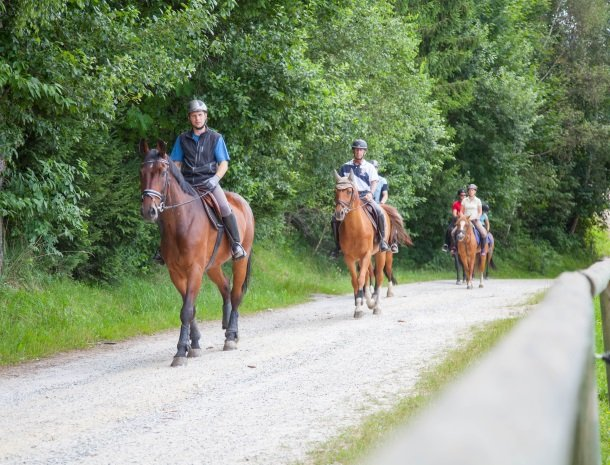 ponyhof-ratten-paardrijtocht.jpg