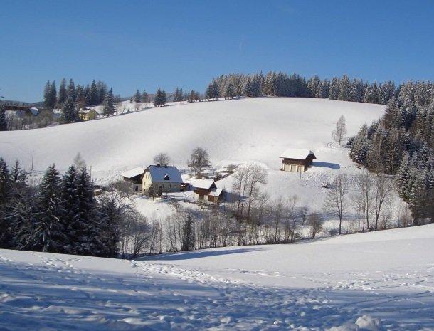 ponyhof-ratten-winter-overzicht.jpg