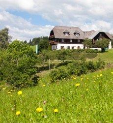 ponyhof-familienhotel-steiermark.jpg