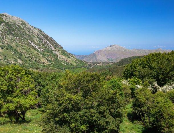 natuurpark madonie sicilie.jpg