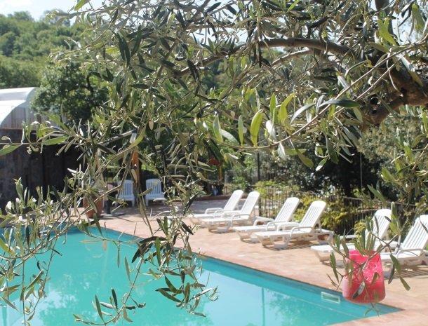 le cisterne-adrano-etna-zwembad-olijfboom.jpg