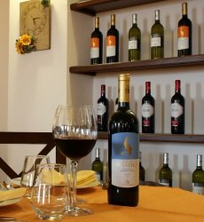 sirignano-wine-resort-sicilie.jpg