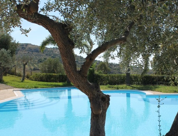 residence-la-luna-nel-pozzo-sciacca-olijfboom-zwembad.jpg