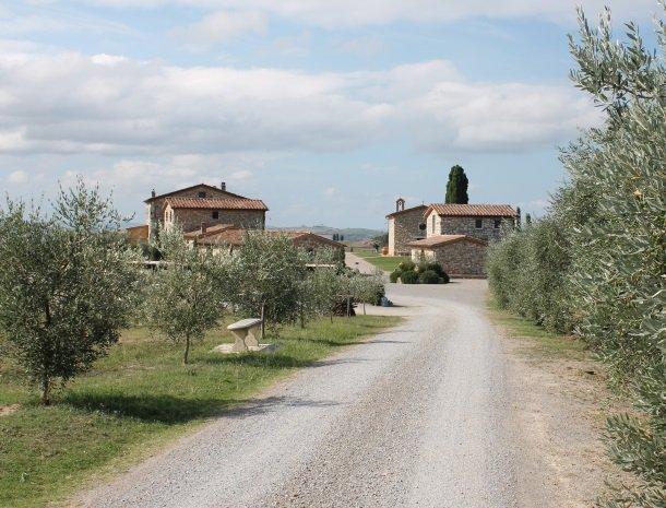 agriturismo-san-lorenzo-rapolano-toegangsweg.jpg