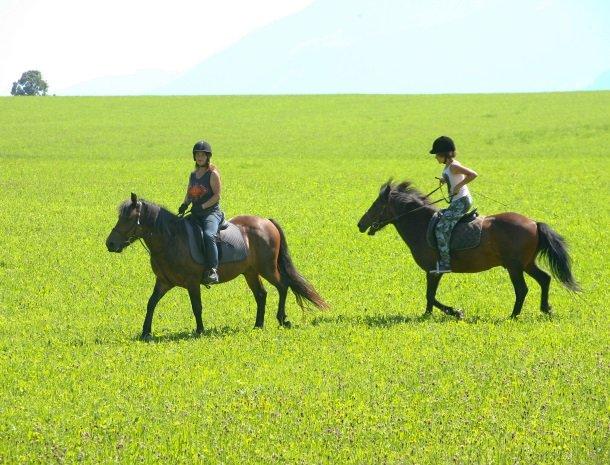 baerenwirt-aich-steiermark-paardrijden.jpg