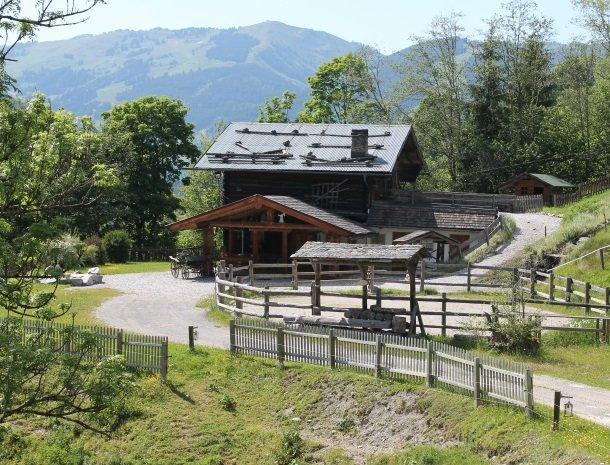 hotel-eggerhof-saalbach-almhut-overzicht.jpg