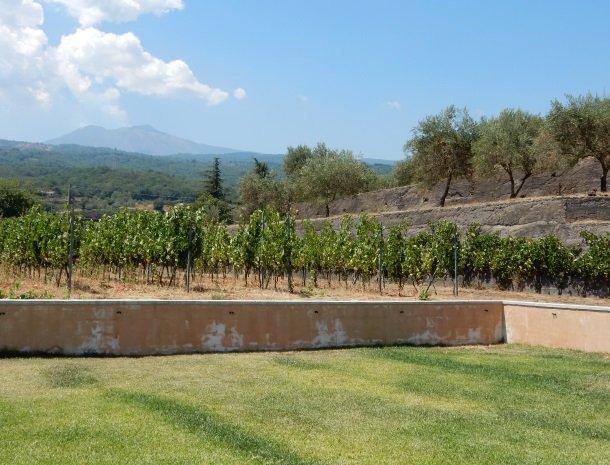 tenuta-scilio-agriturismo-wijngaarden-etna.jpg