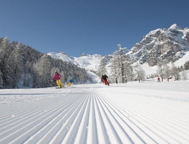 adler hotel-pension-fulpmes-stubaital-winter-skien.jpg