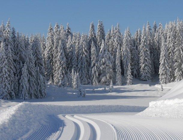 weissensee-karinthie-oostenrijk-winterlandschap.jpg
