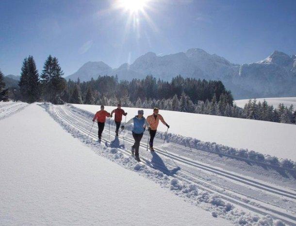 hotel das waldheim-salzburgerland-winter-langlaufen.jpg