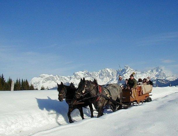 hotel das waldheim-salzburgerland-winter-arreslee.jpg