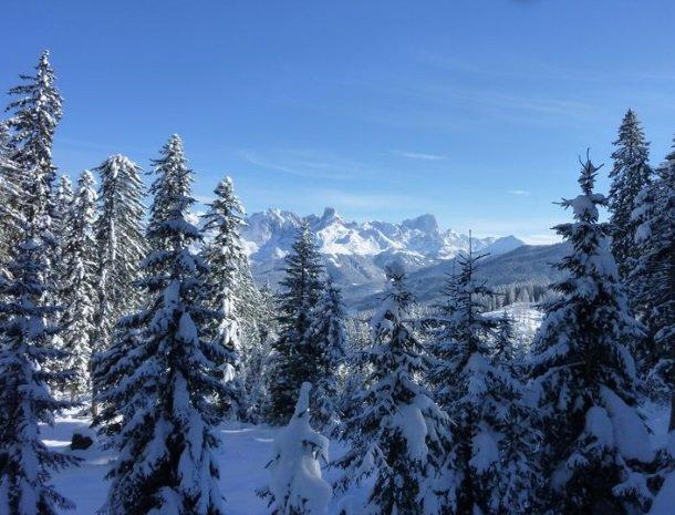 hotel das waldheim-salzburgerland-winter-uitzicht.jpg