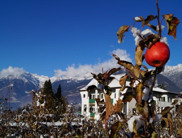 hotel-pension-verdorfer-merano-winter-appel.jpg