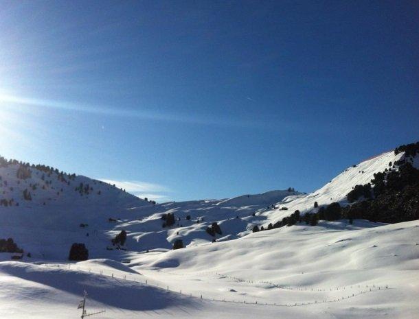 hotel-arnaria-ortisei-trentino-skien-dolomieten.jpg