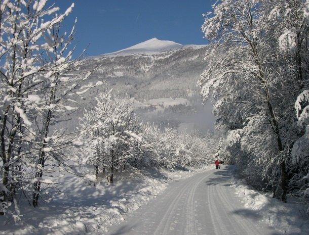 stofflerwirt-stmichaelimlungau-winterlandschap.jpg