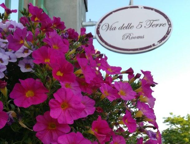 viadelle5terre-la-spezia-ligurie-bloemen.jpg