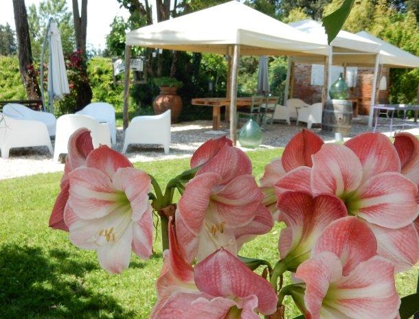 relais-del-lago-capannori-lucca-tuin-bloemen.jpg