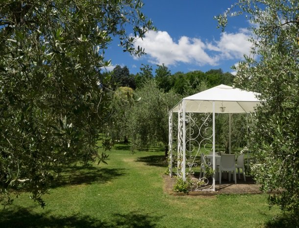 agriturismo-nobile-montepulciano-tuin-olijfbomen.jpg