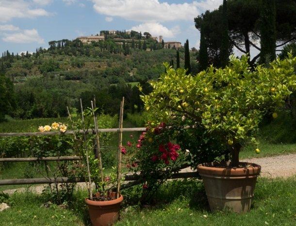 agriturismo-nobile-montepulciano-bloemen-uitzicht.jpg