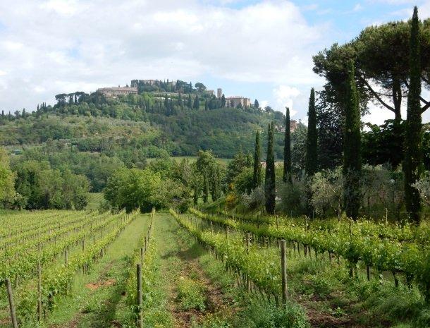 agriturismo-nobile-montepulciano-wijngaarden.jpg