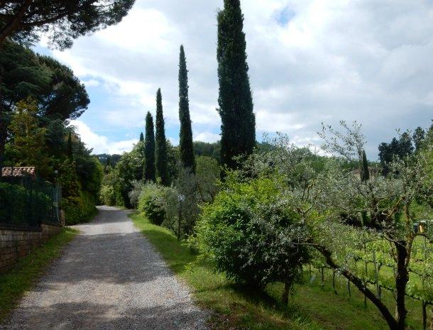 agriturismo-nobile-montepulciano-oprijlaan-cypressen.jpg