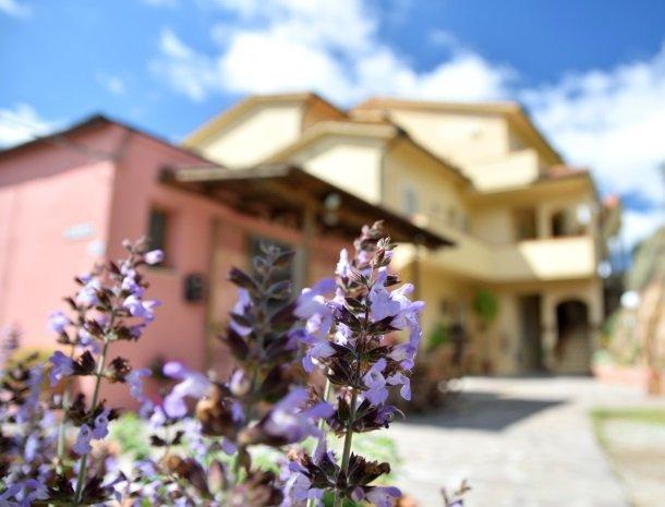 residence-minihotel-lacona-appartementen-bloemen.jpg