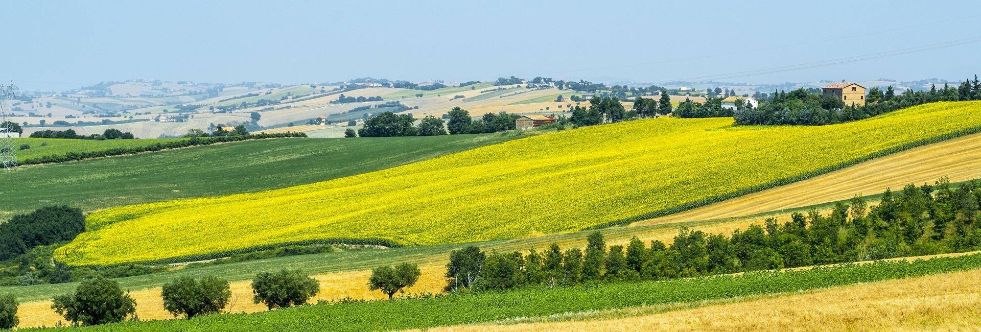 marche-italie-landschap.jpg