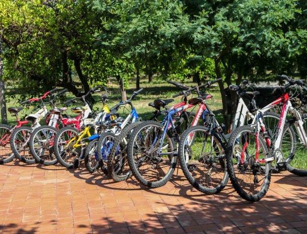 agriturismo-galea-riposto-sicilie-mountainbikes.jpg