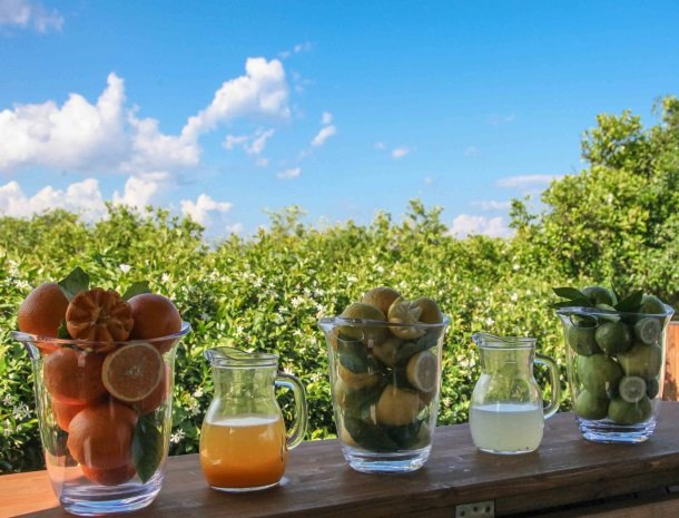 agriturismo-galea-riposto-sicilie-kiosk-fruit-drankje.jpg