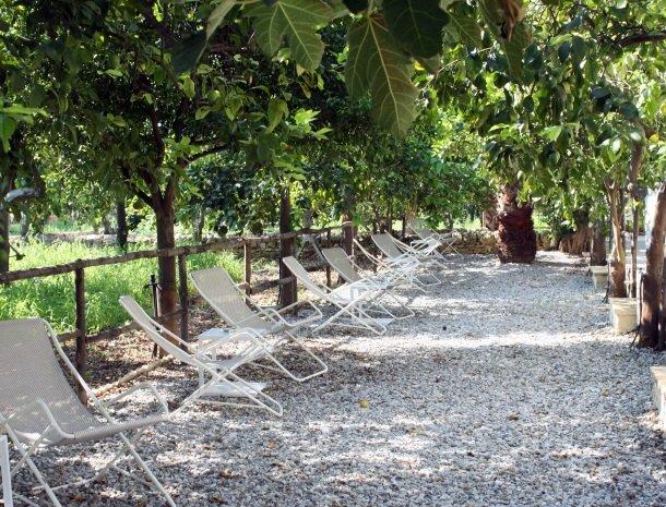 baglio-siciliamo-noto-sicilie-tuin-zitjes.jpg