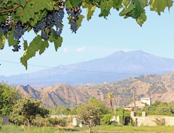 sike-holiday-home-sicilie-wijngaarden-etna.jpg
