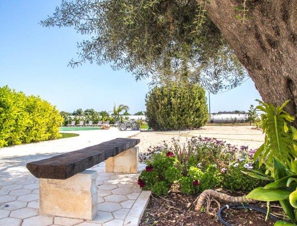 addauro-resort-siracusa-sicilie-tuin-olijfboom.jpg