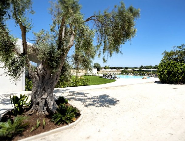 addauro-resort-siracusa-sicilie-tuin-zwembad.jpg